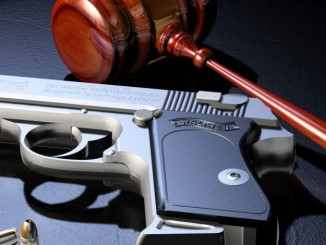 Courts and gun laws